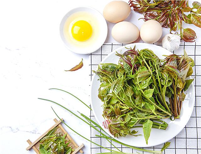 新鲜龙须菜的保存方法