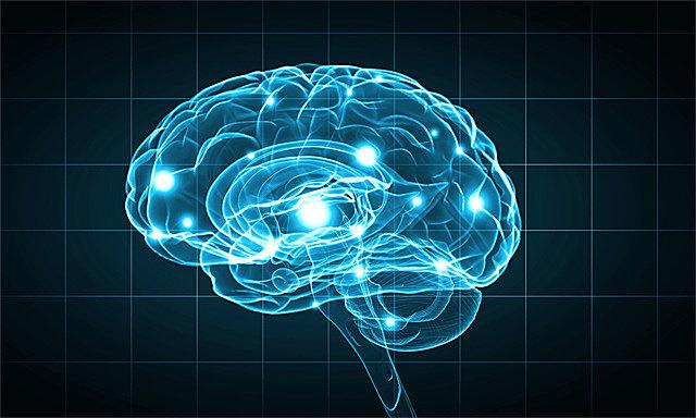 老年人大脑萎缩有什么表现