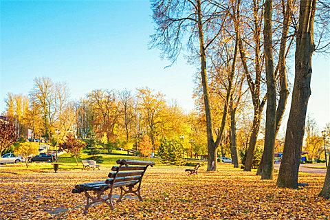 秋季锻炼的最佳时间
