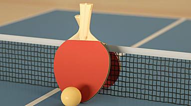 乒乓球比赛的器材是什么标准