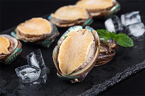 怎么挑选优质干鲍鱼?新鲜鲍鱼和干鲍鱼哪个好?