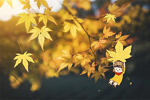 秋天有哪些应季的蔬菜和水果