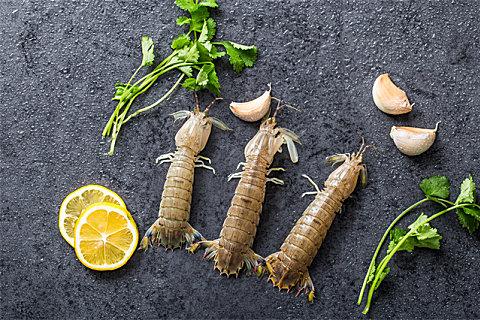 皮皮虾什么季节的好吃