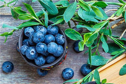 蓝莓怎么保存?蓝莓这样代表坏了不能吃