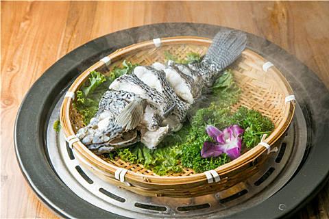 石斑鱼怎么挑选比较好