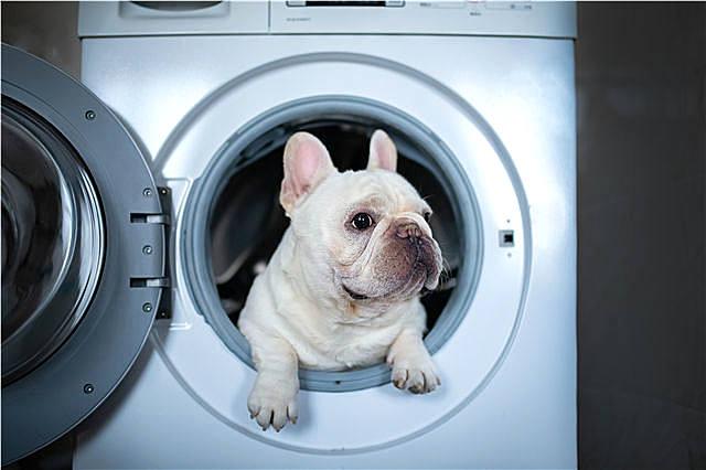 洗衣机太脏怎么清洗