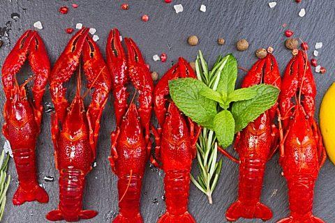 龙虾哪些人不能吃?一定要注意这几点,否则危害健康!