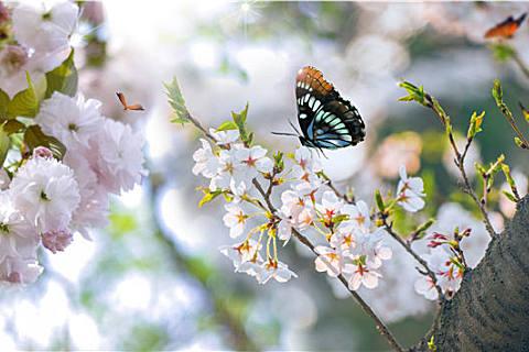 为什么要春捂?春捂的好处多