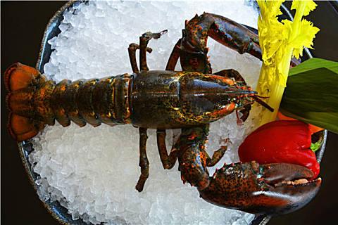 大龙虾的头能不能吃