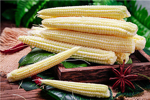 玉米笋营养美味做法食谱