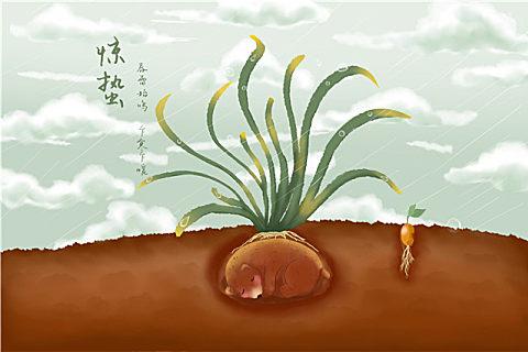 惊蛰吃韭菜的好处和禁忌