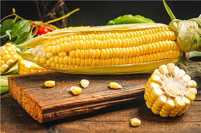 玉米什么时候成熟