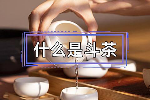什么是斗茶