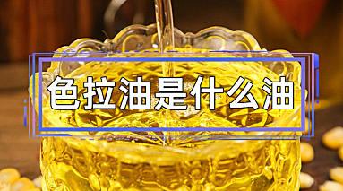 色拉油是什么油