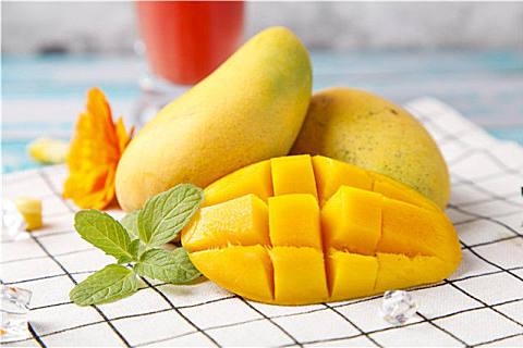 常见的芒果品种及上市时间